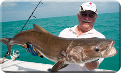 Key West wreck and reef fishing